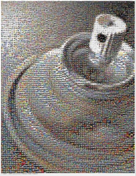 DAIM - Can Mosaic Poster